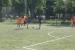 dzien-sportu-2011 (4)