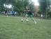 dzien-sportu-2012 (17)