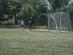 dzien-sportu-2012 (2)