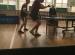 final-licealiada (1)