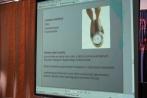 Spotkanie Edukacyjno-Profilaktyczne wLO ws Anoreksji 2012 (5)