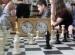 turniej-szachowy-2016 (7)