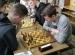 turniej-szachowy-2016 (8)