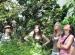 Wycieczka doHotelu Ossa iOgrodu Botanicznego wPowsinie 2011 (53)