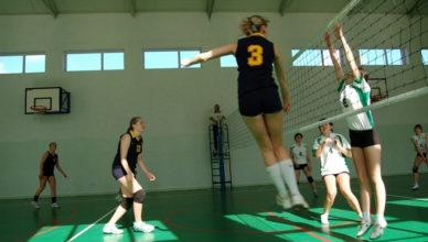 pilka-siatkowa-dziewczyn-2008-11