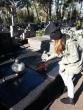 1-listopada-2014-groby (4)
