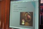 Spotkanie Edukacyjno-Profilaktyczne wLO ws Anoreksji 2012 (6)