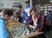 turniej-szachowy-2016 (5)