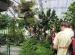 Wycieczka doHotelu Ossa iOgrodu Botanicznego wPowsinie 2011 (43)